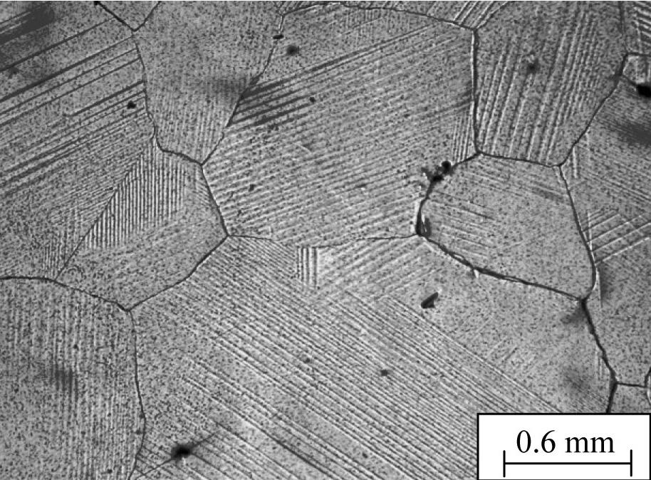 Показано, что при охлаждении ниже температуры мартенситного ГЦК-ГЦТ превращения в сплаве In–4.5 мас.% Cd образуется пакетная структура, состоящая из колоний тетрагональных пластин-ламелей.