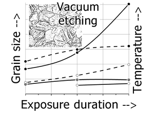 Features of austenitic grains growth in steel forging from a large ingot