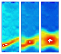 Методом корреляции цифровых изображений (КЦИ) при испытаниях на растяжение изучены механизмы деформации Людерса в образцах низкоуглеродистой стали X80 с ультрадисперсной структурой после термообработки по различным режимам. Показано, что в зависимости от величины эффекта деформационного старения существует два вида деформации Людерса.