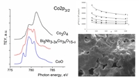The analysis of the NEXAFS Co2p-spectra of cobalt-containing solid solutions and cobalt oxides revealed that the studied Co atoms were mainly in the +2 and +3 oxidation state, which correlates well with the magnetochemical study data.