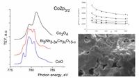Анализ NEXAFS Co2p-спектров кобальтсодержащих твердых растворов и оксидов кобальта показал, что атомы кобальта находятся в степени окисления +3 и преимущественно +2, что удовлетворительно коррелирует с данными магнитохимических исследований.