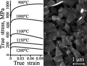 Зависимости истинного напряжения от истинной деформации никелевого сплава, полученные в результате испытаний на сжатие и микроструктура (BSE) выделений γ′ фазы с мелкими карбидами.