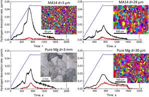 Grain size does not affect the diffusible hydrogen concentration in both pure magnesium and the alloy MA14.
