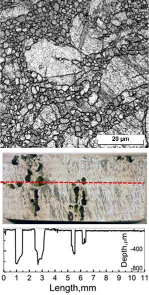 Structure and corrosion damage in a biologically active medium of a bioresorbable magnesium alloy