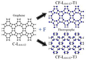 When fluorinating 4-6-12 graphene layers two stable polymorphic varieties of fluorographene layers T1- or T3-type can be formed