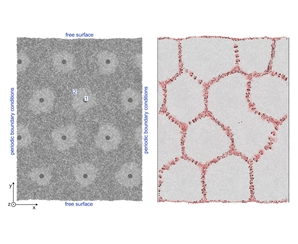 The formation of free volume in grain boundaries and triple junctions during crystallization using nickel as an example is studied by the molecular dynamics method