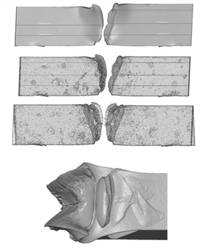 The summary energy expenditures for deformation of specimens of pipe steel of strength class X80 were determined basing on experimentally measured geometry of the 3D images of fractured specimens.