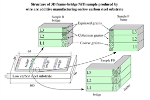 """The structure of the3D frame-bridge NiTi sample produced by wire arc additive manufacturing is more complex than the structure of the simple """"walls""""."""