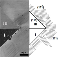The selectivity of shear systems during microindentation of single crystals of Hadfield steel by a Vickers pyramid is shown in accordance with the calculated value of the Schmid factor for slip systems.
