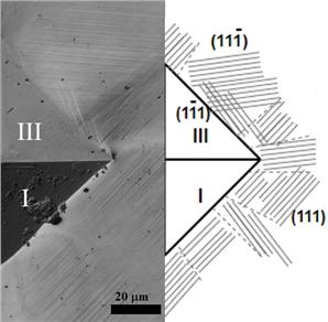 Показана избирательность систем сдвига при микроиндентировании монокристаллов стали Гадфильда пирамидкой Виккерса в соответствии с расчетным значением фактора Шмида для систем скольжения.