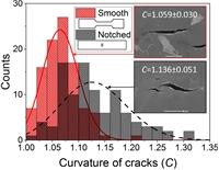 Характеристики напряженно-деформированного состояния определяют путь и геометрию трещин квазискола в низкоуглеродистой стали охрупченной водородом.