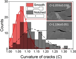 The characteristics of the stress-strain state determine the path and geometry of quasi-cleavage cracks in hydrogen-embrittled low-carbon steels.