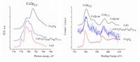 Согласно XPS- и NEXAFS 2p-спектрам атомов допированного кобальтом CaCu3Ti4O12 и соответствующих оксидов установлено, что ионы меди и кальция имеют степень окисления +2, ионы титана +4, ионы кобальта преимущественно +2 и небольшое количество Co(III) в высокоспиновом состоянии.