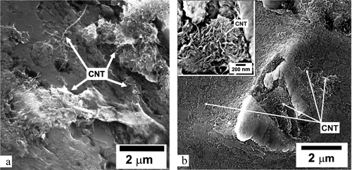 SEM images of samples with CNT's in central part in copper and aluminium.